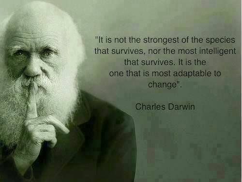 Evolution Charles Darwin Science Survival Of The Fittest Biology Natural Selection Variation Mutation Darwin Quotes Charles Darwin Quotes Wisdom Quotes