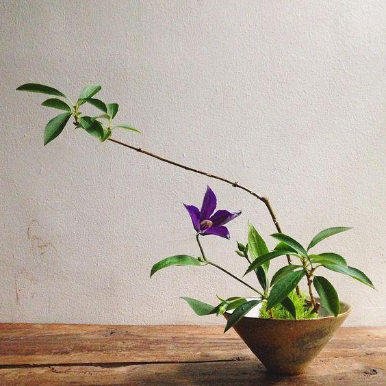 夕暮れ一杯。#tumblerandflowers #flower #branch #forsythia #clematis #ikebana #いけばな #wataraikebana #ShinsakuNakazono