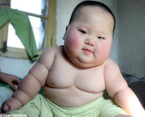 Bbw Fat Pron Xxx Hd