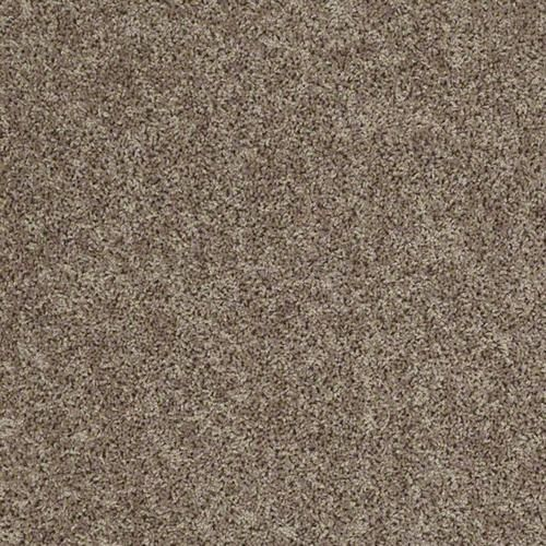 Shaw Voyager Plush Carpet 12 Ft Wide At Menards Carpetswithunderlay Plush Carpet Living Room Carpet Affordable Carpet
