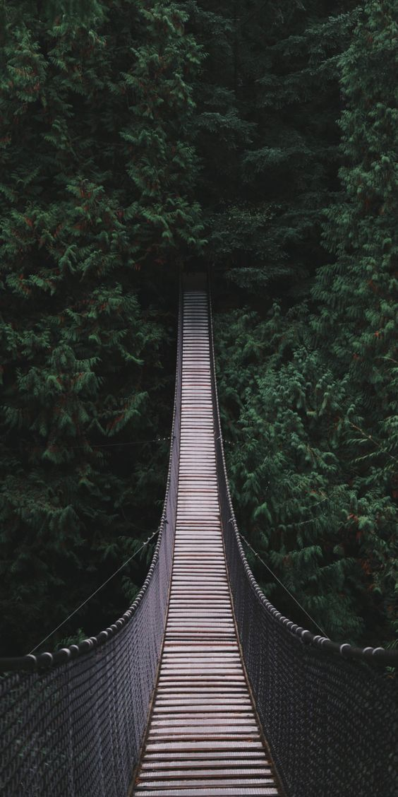 List Of Most Downloaded Aesthetic Background For Smartphones Today In 2020 Forest Wallpaper Iphone Landscape Wallpaper Forest Wallpaper