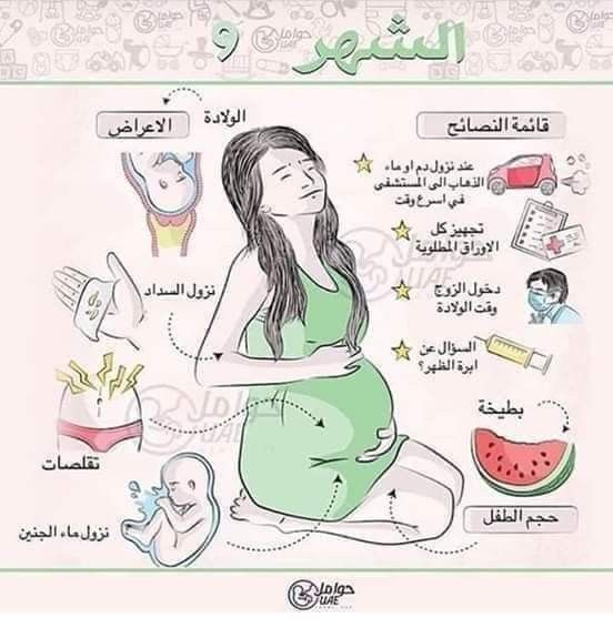 أعراض الحمل في جميع الشهور Baby Information Baby Education Baby Advice