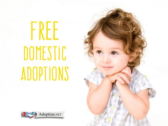 domestic adoption vs international adoption When mitch and susan glavas began the domestic adoption process in   international adoptions, once a popular route for many american.