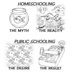 homeschooling...I agree:)  Check out www.NYHomeschool.com as well.