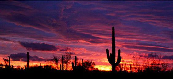 Arizona Desert Sunset | sunset in the Arizona desert