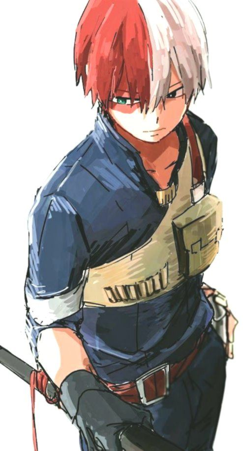 Shoto Todoroki My Hero Academia Fanart Manga Anime Animeboy