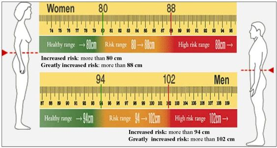 ukuran lingkar pinggang ideal dan berisiko obesitas