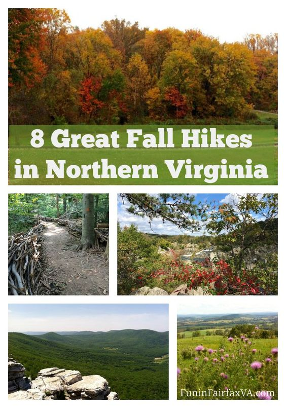 Here are 8 great Fall hikes in Northern Virginia (some with a Virginia winery visit), perfect for enjoying cooler, dryer weather and changing foliage.