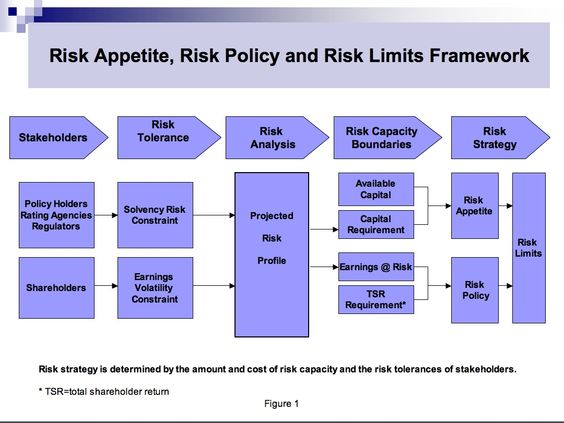 Risk Tolerances  GoogleSgning   Risk Management