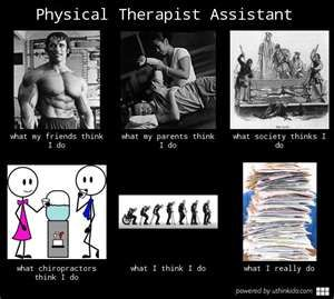 I want to be a physical therapist, what do I major in?