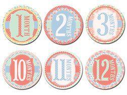 Sticky Bellies - Garden Party Stickers 0-12 Months