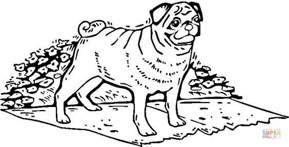 Pug Dog | Super Coloring | dog patterns | Pinterest | Pugs ...