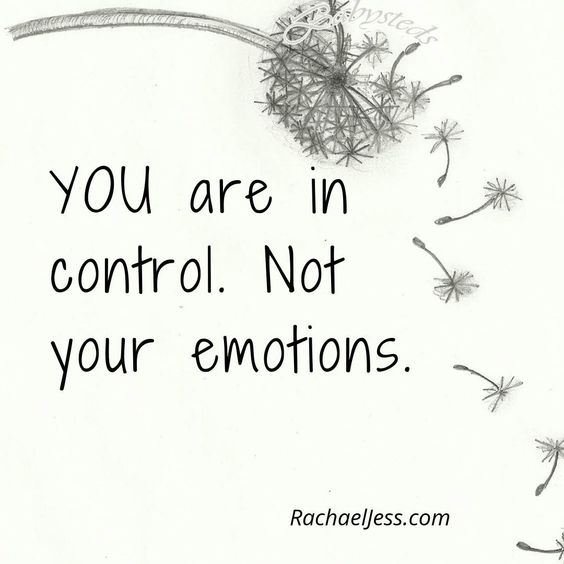 @RachaelJessBlog posted to Instagram: YOU are in control. Not your emotions #instaquotes #dailyquotes #quotestagram #quotesofinstagram #quotestoliveby #quoted #bestquotes