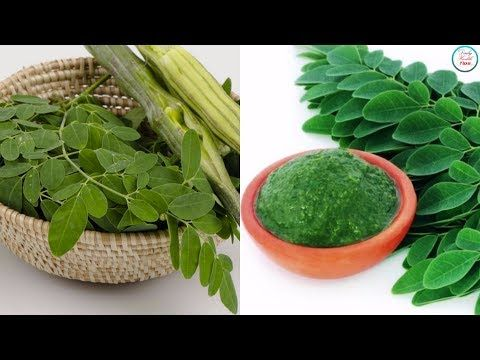Malunggay Health Benefits Youtube Daily Health Tips Health Benefits Health