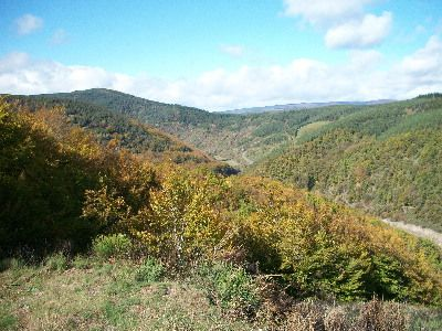 Cevennes National Park in Southern France