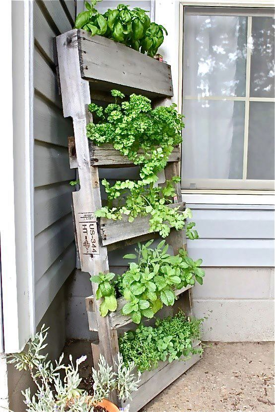 pallet turned on it's side and made into planter boxes
