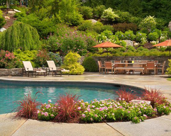 18 Amazing Poolside Landscape Ideas Poolside Landscape Ideas Backyard Pool Landscaping Backyard Pool