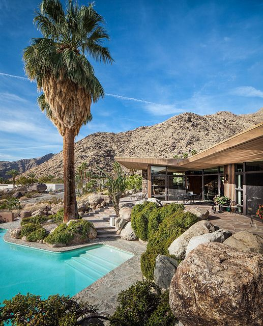 Spring palms and architects on pinterest for The edris house palm springs