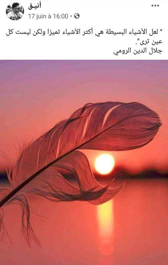 كلمات وحكم Live Picture Beautiful Pictures Arabic Quotes