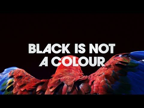 "#AdoftheWeek 10 September 2014: ""#MadeofMore #MadeofBlack"". Isobar SSA, AMV BBDO & BBDO Africa TVC for Guinness: ""#MadeofBlack""."