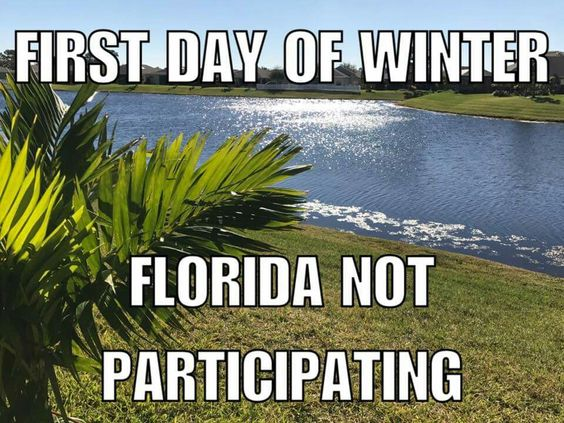 Winter in Florida meme