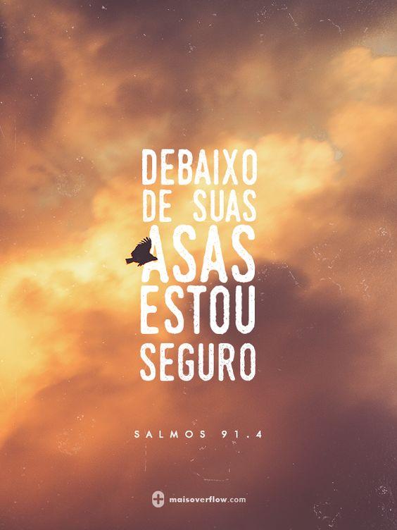 debaixo de suas asas estou seguro  - salmos 91.4: