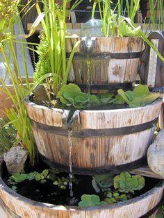 Tonneaux de bois. Ce bassin simplissime mais très original a été conçu grâce à 3 tonneaux de bois et une pompe. Des joncs, des papyrus, des fleurs flottantes et une carpe semblent y vivre bien à leur aise !