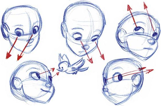 how to draw head positions