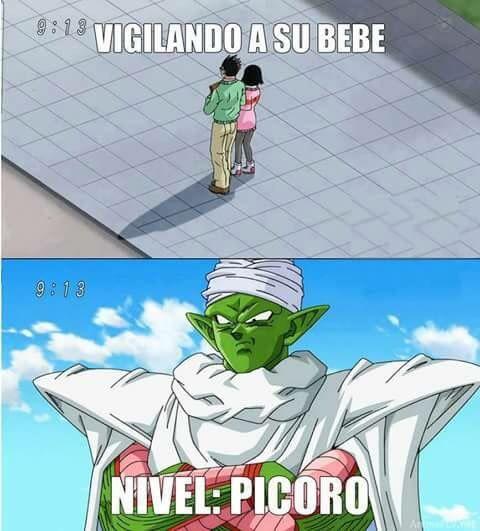 Picoro