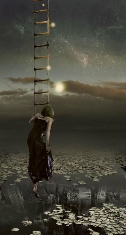 How many times will we go up and down the Ladder without seeing the Light. I love You.