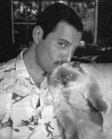 Freddie Mercury and his cat Bohemian Rhapsody