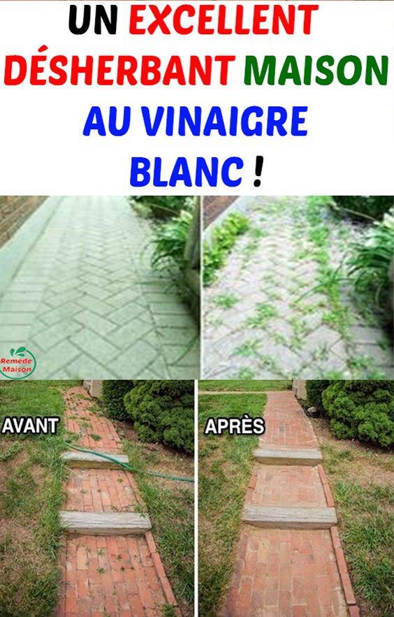 Un Excellent Desherbant Maison Au Vinaigre Blanc Clay Pot Irrigation Food Garden Sustainable Garden