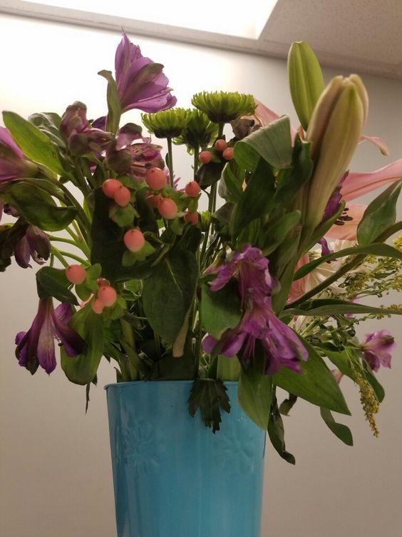 Nurses' Day Gift! @nursecribed @apna @ellipsix