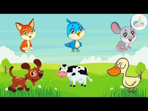 انشودة اصوات الحيوانات للاطفال الصغار تعليم الاطفال النطق اغاني اطفال اسماء حيو Arabic Alphabet For Kids Alphabet Flash Cards Printable Alphabet For Kids