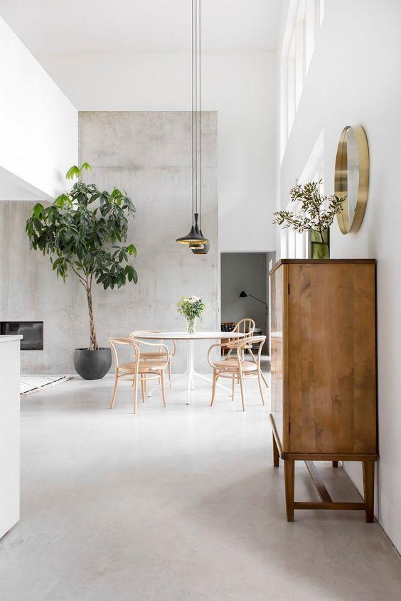 minimalistisch interieur kamerplanten