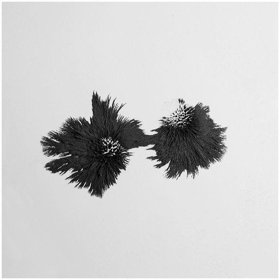 Le magnétisme de Ling Meng magnetisme aimant paillette metal 03 bonus art