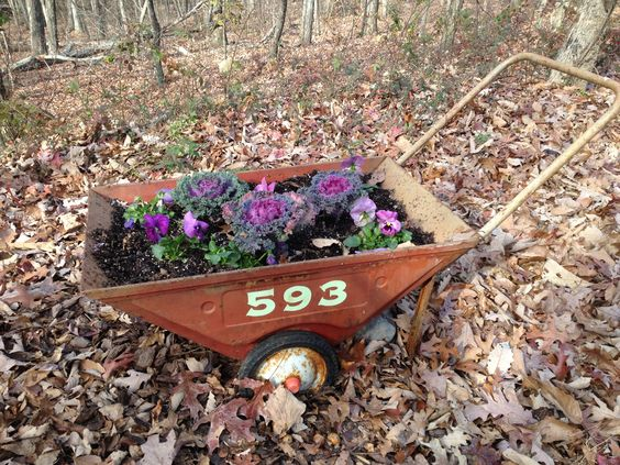 Flowers in old wheel barrow with house number painted on the side.