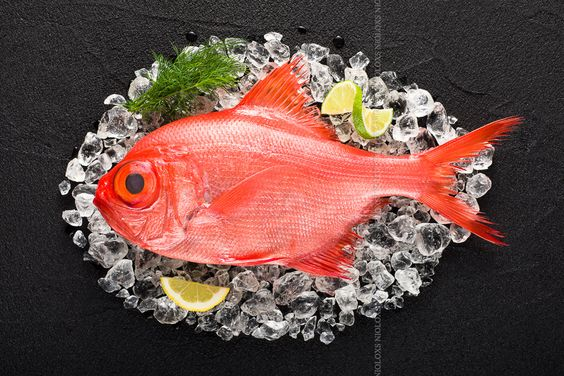 Red palometa fish on ice on a black stone table top view by Kamil Zabłocki on 500px
