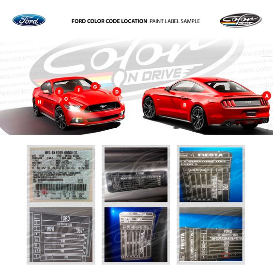 Ford Color Code Location Paint Label Sample Coding Color