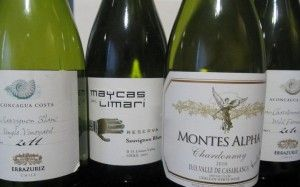 There are some great wine discoveries to be made with Chile. Over the years, like other wine-producing countries, they have managed to learn about their own terroir and have figured out which grape varieties are most suitable to be planted and perform better in a diverse range ofmicro climates. Mor