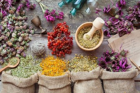 6 plantas medicinales para combatir la esclerosis múltiple