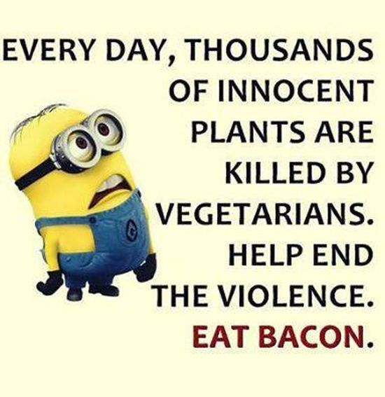 Funny Minions Pictures And Funny Minions Quotes 012