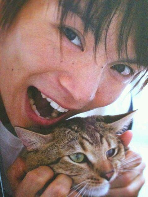 猫と戯れる笑顔の窪田正孝