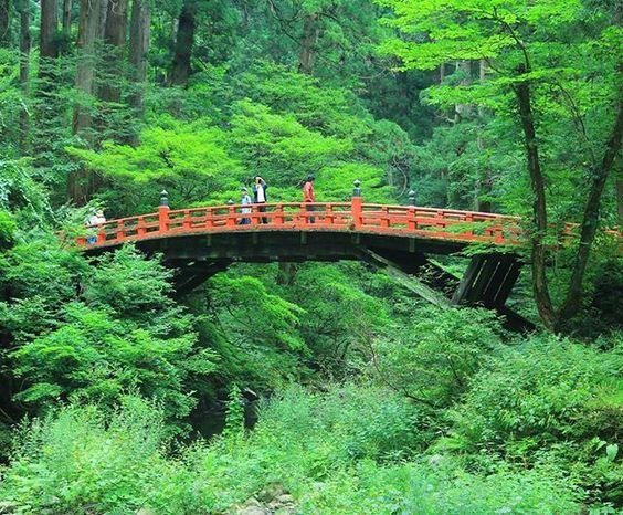 羽黒山♪ 遠かった~(>_<) #羽黒山 #羽黒山神社 #出羽三山神社 #神道 #五重塔 #国宝 #鳥居#朱色#苔#拝殿#橋#階段#杉#山形県#鶴岡市 #haguro#Haguroshrine#moss #torii #vermilion #bridge #Nationaltreasure#Fivestorypagoda #Stairs#Cedar#yamagata #yamagatagram#nature #shrine#Shinto