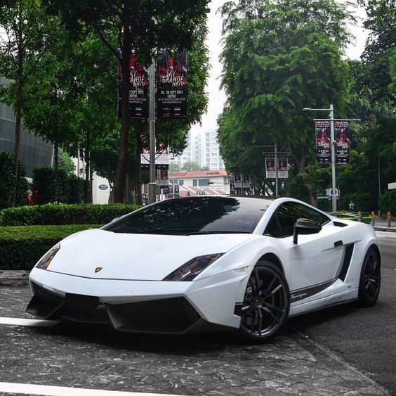 Lamborghini Gallardo LP570-4 Superleggera painted in Bianco Monocerus   Photo taken by: @blackfoxphotography on Instagram