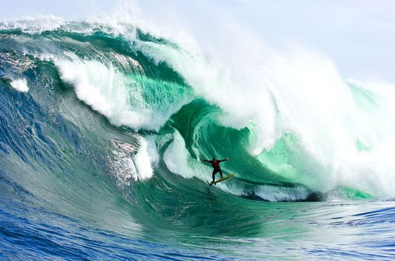 Learn how to surf.