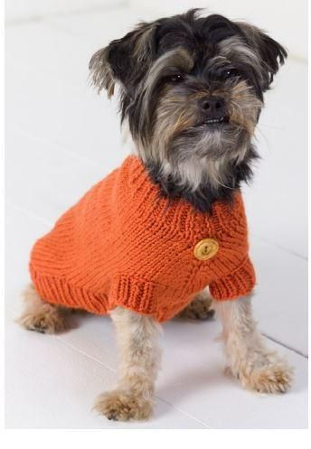 Best Friend Knitted Dog Sweater Kit