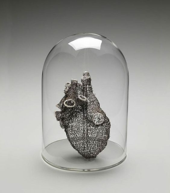 Anne Mondro est professeur agrégée à l'école d'art et de design du Michigan. Dans ses sculptures anatomiques elle adopte un approche scientifique de son travail.  Pour ce coeur humain réalisé au crochet avec du fil de cuivre étamé, elle s'est aidée d'un logiciel 3D pour reproduire à la perfection tous les détails de l'organe.  Cette réalisation a pris presque un an à Anne Mondro qui a étudié le coeur humain sous toutes ses coutures en passant des heures dans le laboratoire d'anatomie de...
