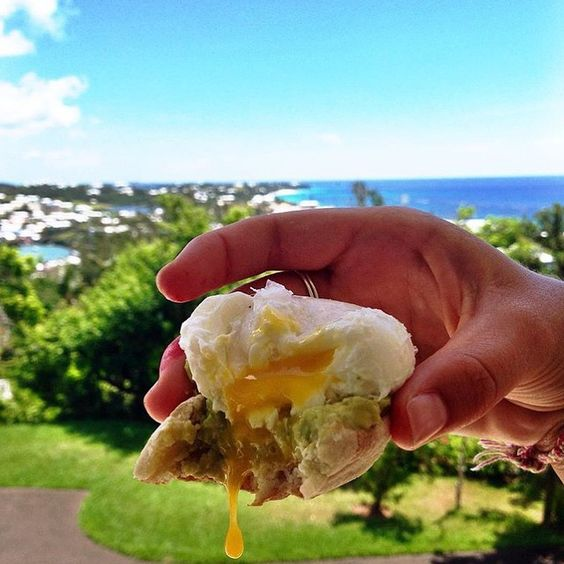 This egg was nothing less than EGGcellent  #foodily #eggs #egg #yolk #yolkporn #avocado #avocadotoast #eeeeeats #bermuda #breakfast #foodporn #eggcellent #foodintheair