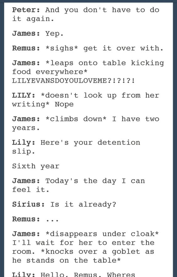 james and lily meet harry fanfic